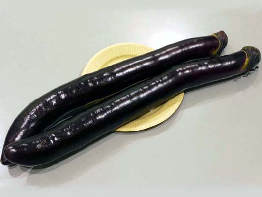 熊本大長なす | 野菜生活研究所